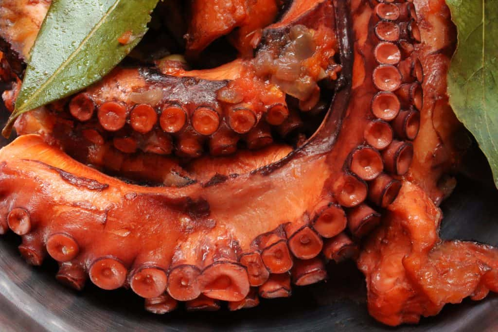 Octopus with onions stew